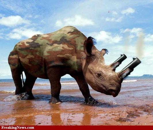 Rhino-Weapon-.jpg