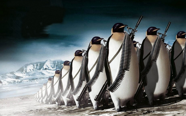 more-penguin-war-ammo-animal-cold-funny-guns-humor-war-source-link-1680x1050.jpg