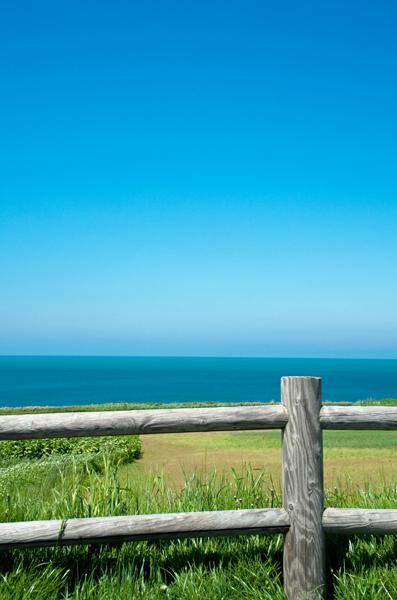 柵越えの海