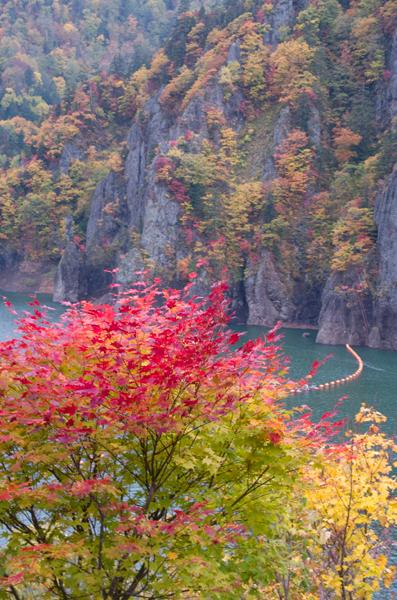 豊平峡紅葉