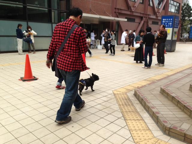 2013-04-05 002 狂犬病予防注射の写真