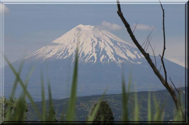 浮島富士山2-5