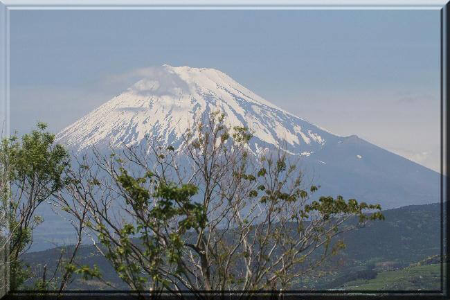 浮島富士山1-5