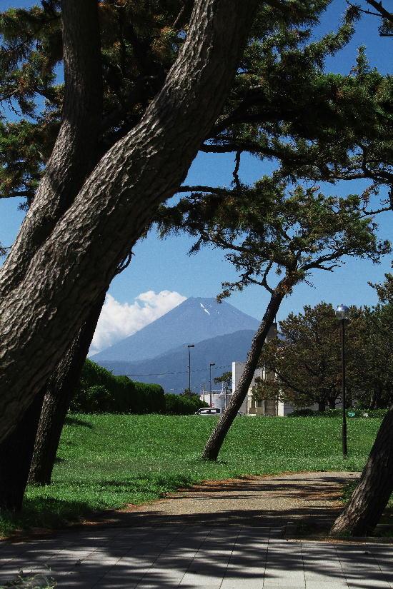港湾からの富士山