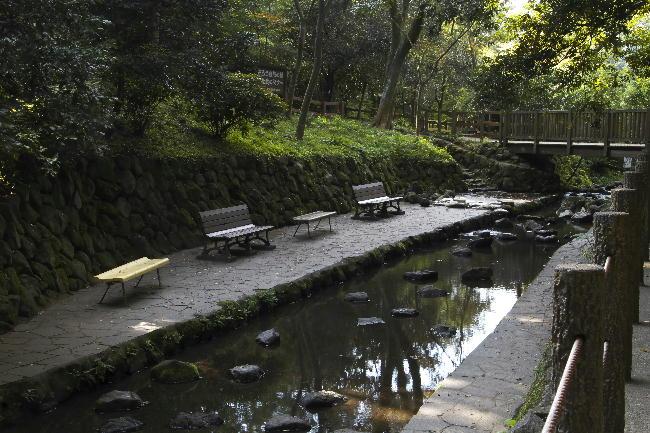 柿田川-6