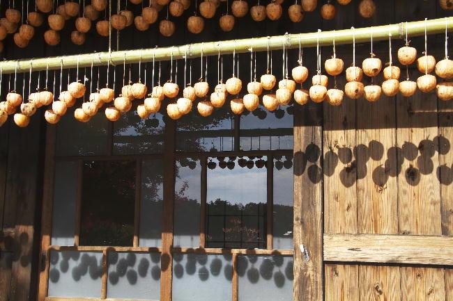 西湖-4干し柿