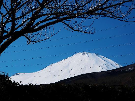霊園からの富士山1