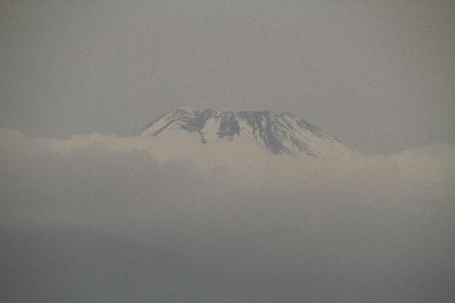 1日 6-37 今朝の富士山1