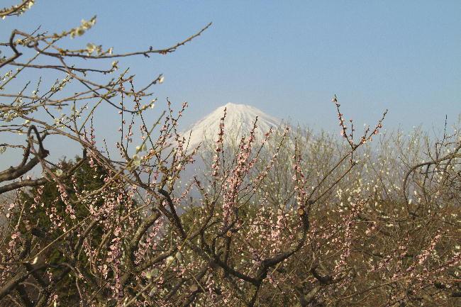 岩本山-3