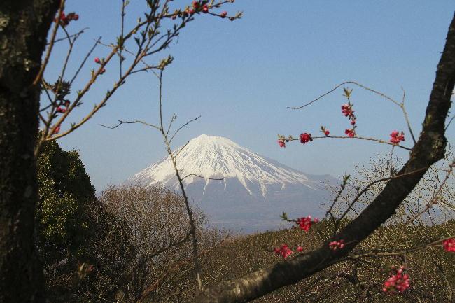 岩本山-1