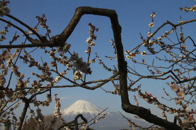 岩本山-2