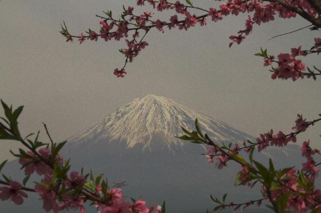 興徳寺-1