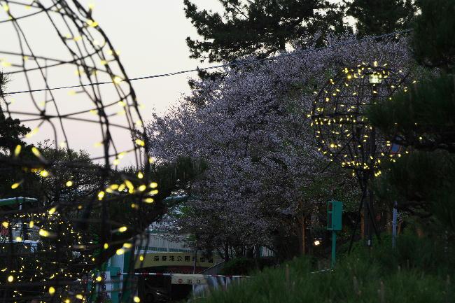 須磨浦公園-2