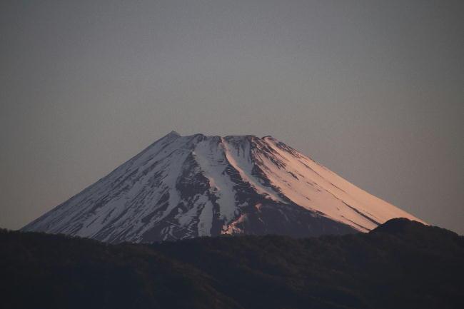 8日 4-56 今朝の富士山