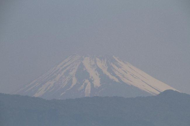 14日 8-51 今朝の富士山