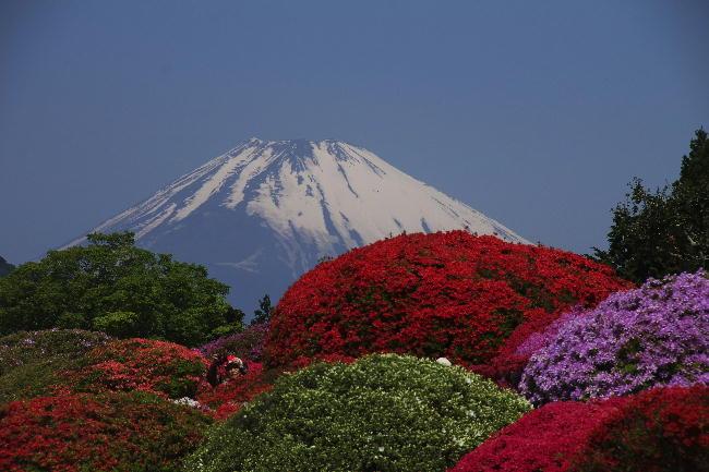 箱根山のホテル 5-10
