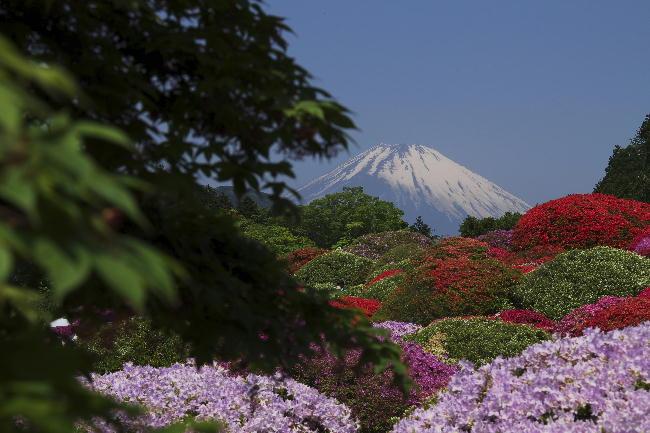 箱根山のホテル-4