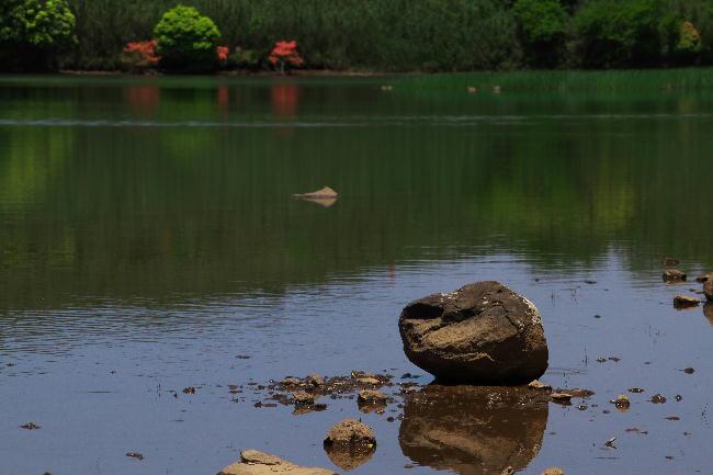 玄岳の池-4