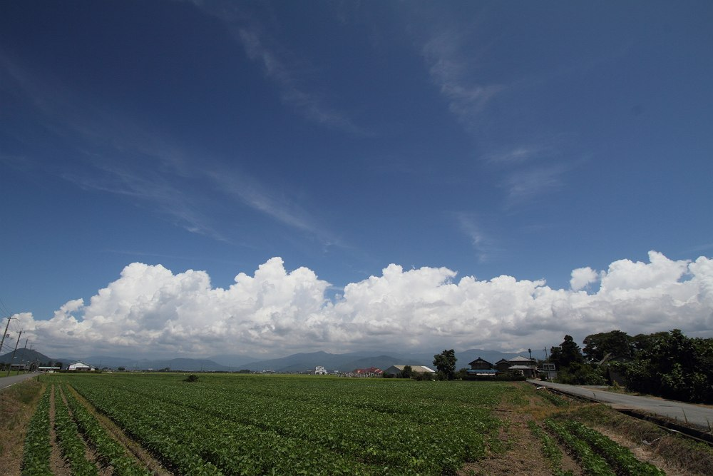 夏・空・雲