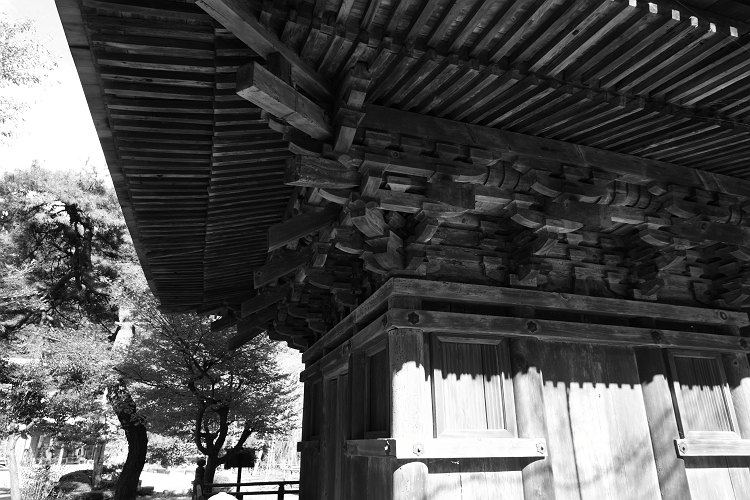 清滝寺徳源院の紅葉
