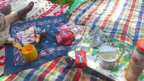 kasai picnic1