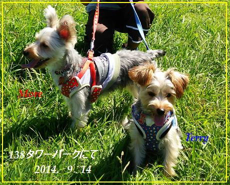 2014-9-14terrymore-kisosansen2.jpg