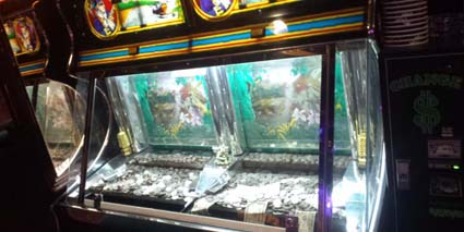 カジノメダルゲーム