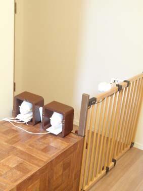 監視カメラと犬小屋