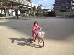 2012_1216_114103-NCM_0966.jpg
