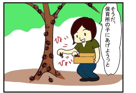 カブトムシ2