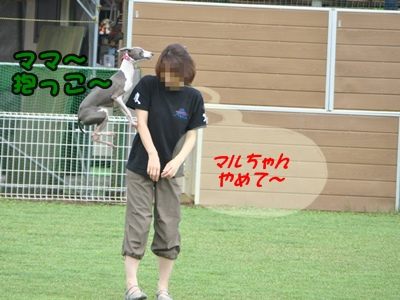 DSC_8883(1)