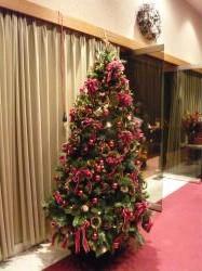 ルーテルのクリスマスツリー