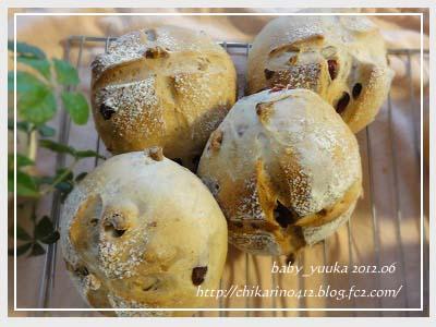 20120628_木の実パン_04