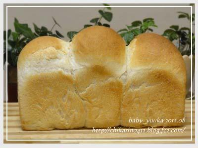 20120804_山食