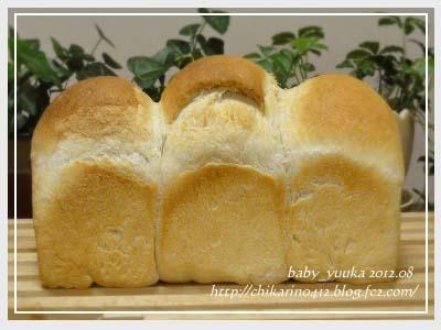 20120804_山食_02
