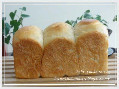 20120917_食パン_01