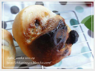 20120924_ぶどうパン_05