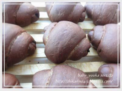 20120927_チョコロールパン_01
