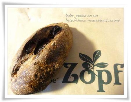 20130123_Zopf04
