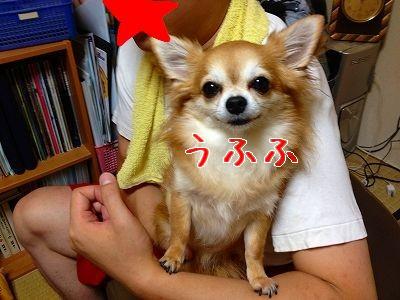 IMG_3353_20121014150034.jpg