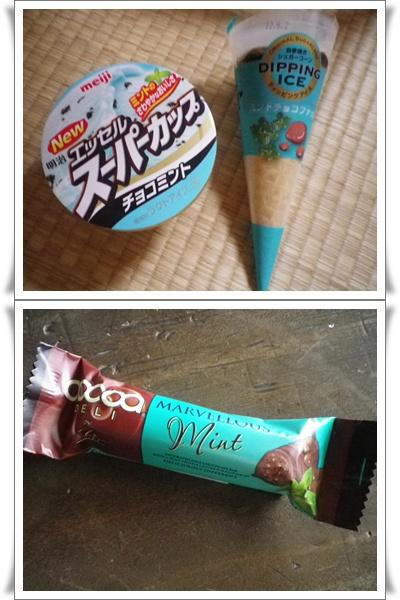 チョコミント17