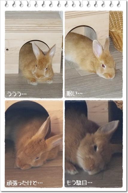 いなりのじかん10