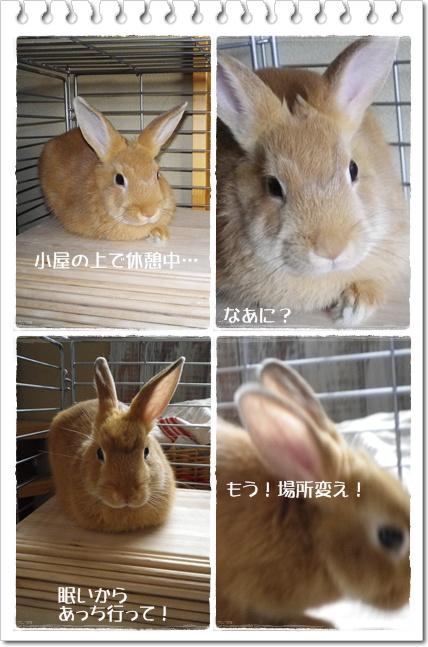 いなりのじかん14