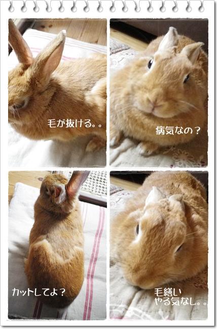 いなりのじかん31