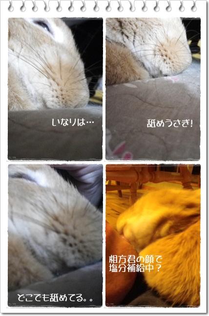 いなりのじかん37
