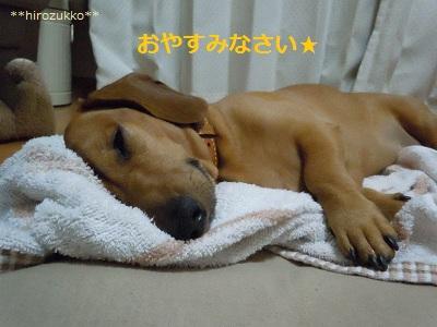 おやすみなさい2