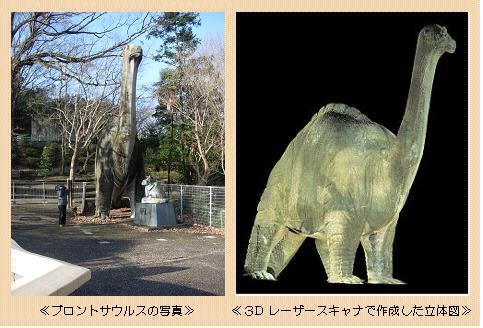 恐竜立体図