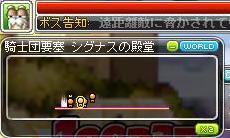 Maple120929_200612.jpg