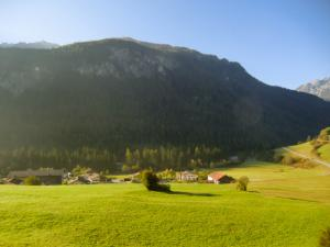 CIMG6030 2011スイス