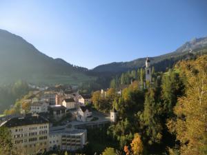 CIMG6034 2011スイス
